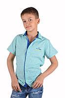 Рубашка детская для мальчика Cegisa 4257 (134/9, бирюза узор)