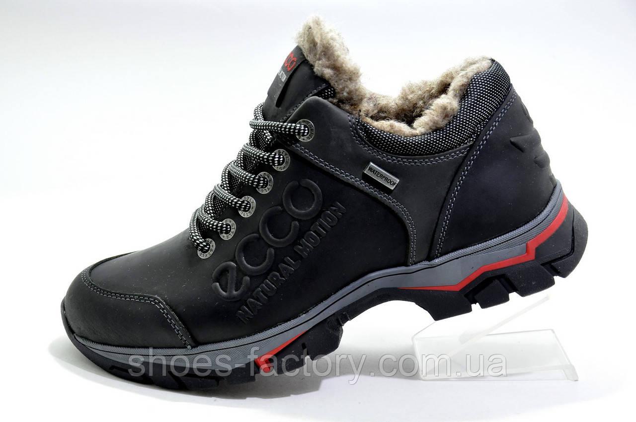 Зимние мужские ботинки в стиле Ecco Low, на меху
