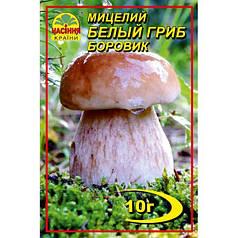 Мицелий белого гриба Боровика, 10 гр