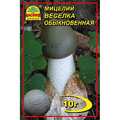 Мицелий гриба Веселка, 10 гр