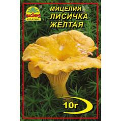 Мицелий гриба Лисички желтой , 10 гр