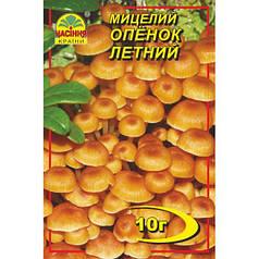 Мицелий гриба Опенок летний, 10 гр