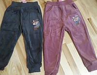 Велюровые утепленные штаны для девочек оптом, F&D, 1-5 лет,  № YF-8517