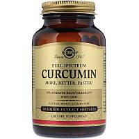 """Куркумин, SOLGAR """"Full Spectrum Curcumin"""" полного спектра (60 гелевых капсул)"""