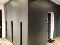 Распашной шкаф в корридор переходящий в стеновые панели, фото 1