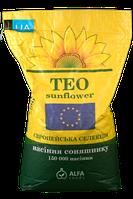 Семена подсолнечника Тео  Екстра
