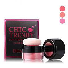 Румяна рассыпчатые BIOAQUA chic trendy soft rose blush, тон Peach Pollen №02, 1 шт