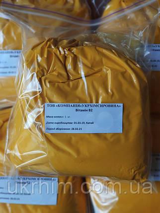 Витамин B2 (Рибофлавин) Синоним Веtаvitаm, фото 2
