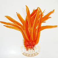 Перо петух (выберите длинну) , ширина 2,5см, цвет Orange, 1шт