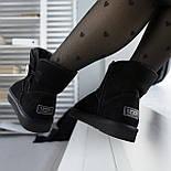 Австралийские угги женские UGG Australia Classic Mini черные. Живое фото. Реплика, фото 3
