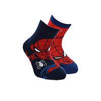 Носки 2 пары Disney Spider Man (Человек Паук) 023-026 р Разноцвет RH0629_1