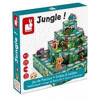 Настольная игра Janod Джунгли (J02741)