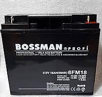 Аккумуляторы свинцово кислотные  BOSSMAN profi 12v18a