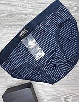 Мужские стрейчевые плавки  Sima Corpion полоска (4404) серый