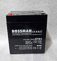 Аккумуляторы свинцово кислотные BOSSMAN profi 12v4a