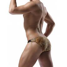 Мужские леопардовые трусы плавки Denny, фото 2