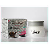 Коллагеновый крем для лица с муцином улитки Snail Collagen омоложение + увлажнение + питание + анти акне 80g, фото 2