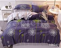 Комплект постельного белья бязь Одуванчики 2 (Двуспальный)
