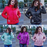 Демисезонная женская куртка 15914, фото 1