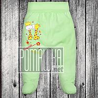 Тёплые ползунки р 74 5-7 мес на флисе детские штанишки на широкой еврорезинке для малышей ФУТЕР 3180 Зелёный Б