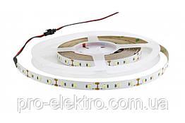 Світлодіодна стрічка AVT-600NW2835-24V DC 24, 9,6 W/m, 120Led/m NW (4000-5000K) нейтральний білий 1018009