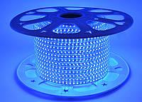 Светодиодная лента SMD 2835 (120 led/m) Slim IP68 Синяя 220V Econom