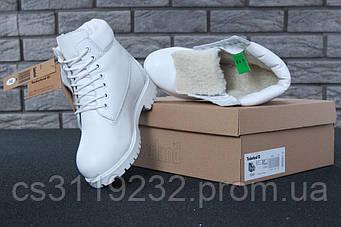 Жіночі зимові черевики Timberland (хутро) (білий)