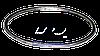 Прокладка выпускного коллектора RENAULT MAGNUM 385/420/500/520 - JD321