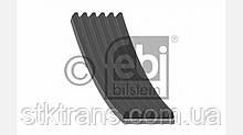 Ремень ручейковый 6PK1110 - 5010095041
