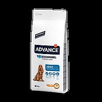 Advance MEDIUM Adult - корм для собак средних пород от 1 года до 7 лет (курица/рис)