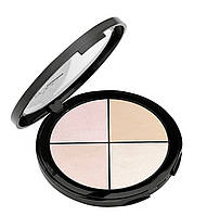 Палетка хайлайтеров Highlighter Palette Aden Professional