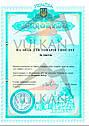 Таль стационарная цепная VULKAN  5T/6M(БЕСПЛАТНАЯ ДОСТАВКА), фото 2