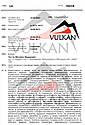 Таль стационарная цепная VULKAN  5T/6M(БЕСПЛАТНАЯ ДОСТАВКА), фото 3
