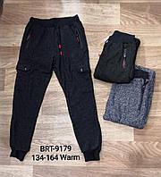 Спортивные брюки с начесом для мальчиков Glo-Story 134-164 р.р., фото 1