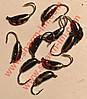 Мормышка вольфрамовая Bravo 2025-146 2,5 мм 0,37 гр. Рижский банан с ушком