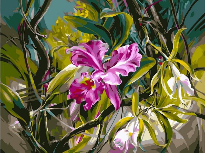 Картина по номерам 40×50 см. Babylon Прекрасные орхидеи Художник Ви Данн Харр (VP101)