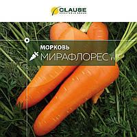 Семена моркови Мирафлорес F1 (1.6-2.0), Clause 100 000 семян | профессиональные