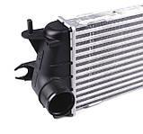 Радиатор интеркулера на Renault Trafic 2.0dCi / 2.5dCi (146 л.с.) с 2006... NRF (Дания),30271, фото 3