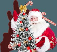 Новогодние елки и гирлянды
