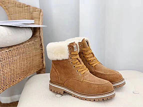 Ботинки Женские UGG (зима), фото 3