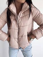 Куртка женская демисезонная. Цвета: черный, пудра