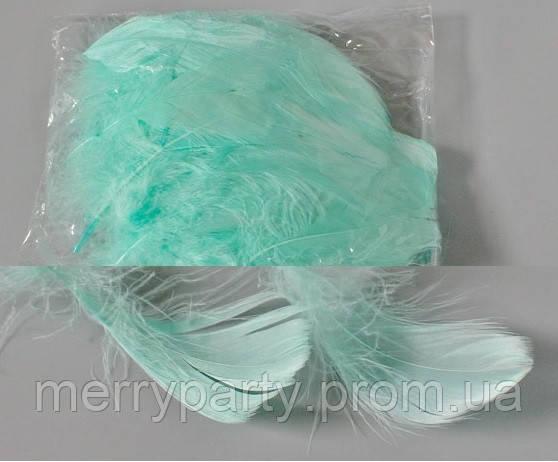 Перья мята 100 шт./ упак.(длина 10-15 см) натуральные для декора и воздушных шаров