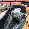 Зимние ботинки (на меху) мужские CAT 13041 ⏩ [ 41,41,42,42,43,43,45 ], фото 3