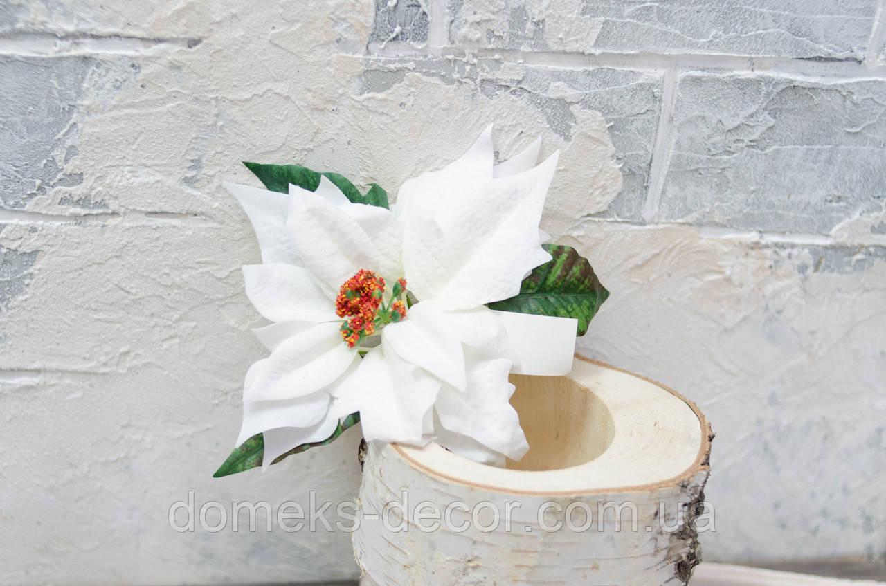 Цветок пуансетии велюр белая с зеленью