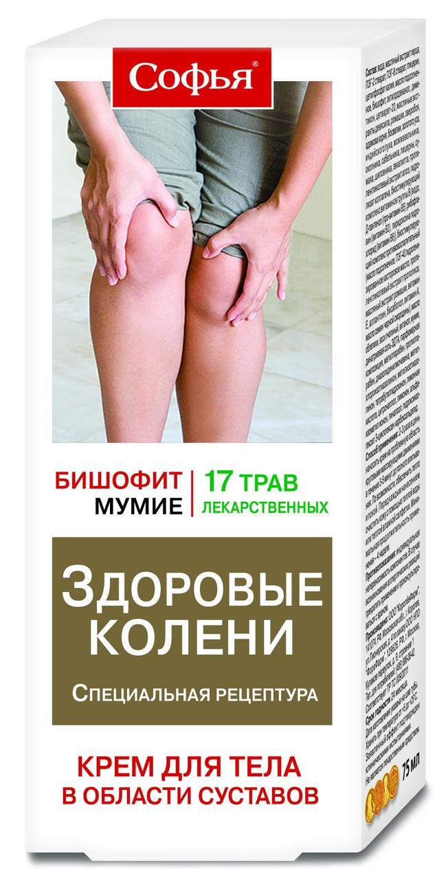 Софья (17 лекарств.трав с бишофитом) крем д/тела Королёв Фарм, 75мл