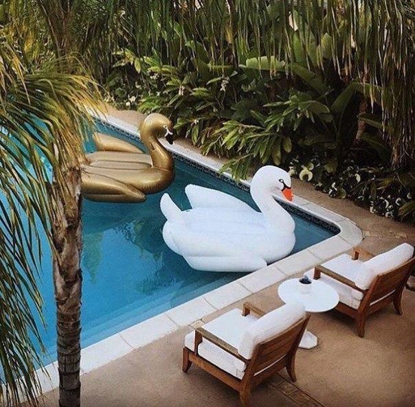 Огромный надувной белый лебедь