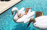 Огромный надувной белый лебедь, фото 2