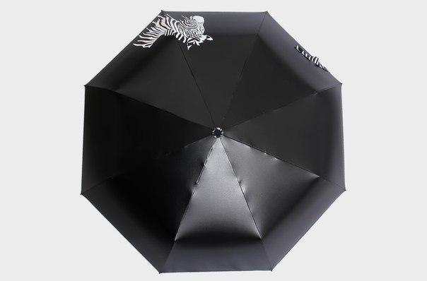 Зонт с зеброй меняющей цвет