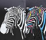 Зонт с зеброй меняющей цвет, фото 6