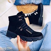 38 р. Ботинки женские деми черные замшевые на низком ходу,демисезонные,из натуральной замши,натуральная замша, фото 1